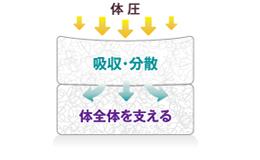 ダブルクッション構造イメージ